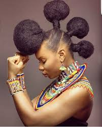 Nigerian Hairstyle 3